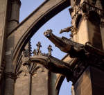 Gargoyles and Flying Buttresses. Metz, France