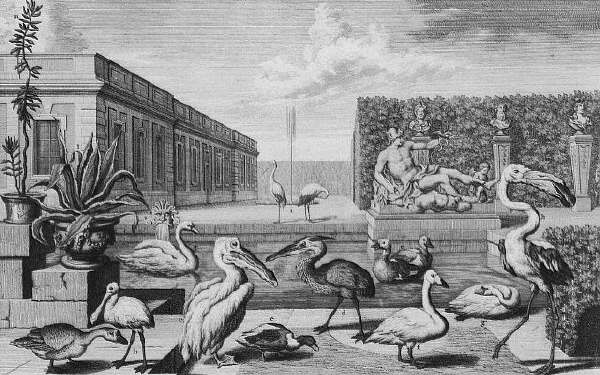 Animals at The Belvedere Palace Menagerie, Vienna ca. 1731-1740