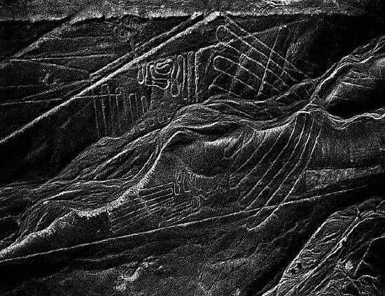 Nazca, Peru. The deeply etched line just above the bird was identified by Maria Reiche as a moonrise line