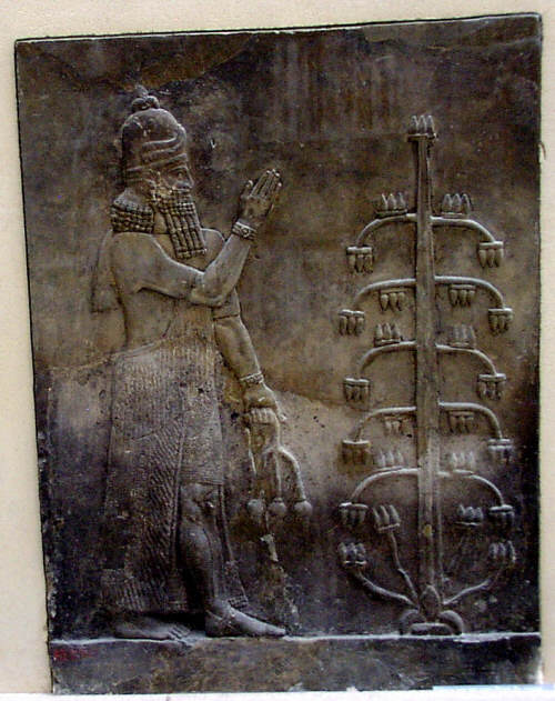 Assyrian Genie holding Poppy Flower, Musee Louvre, Paris, France